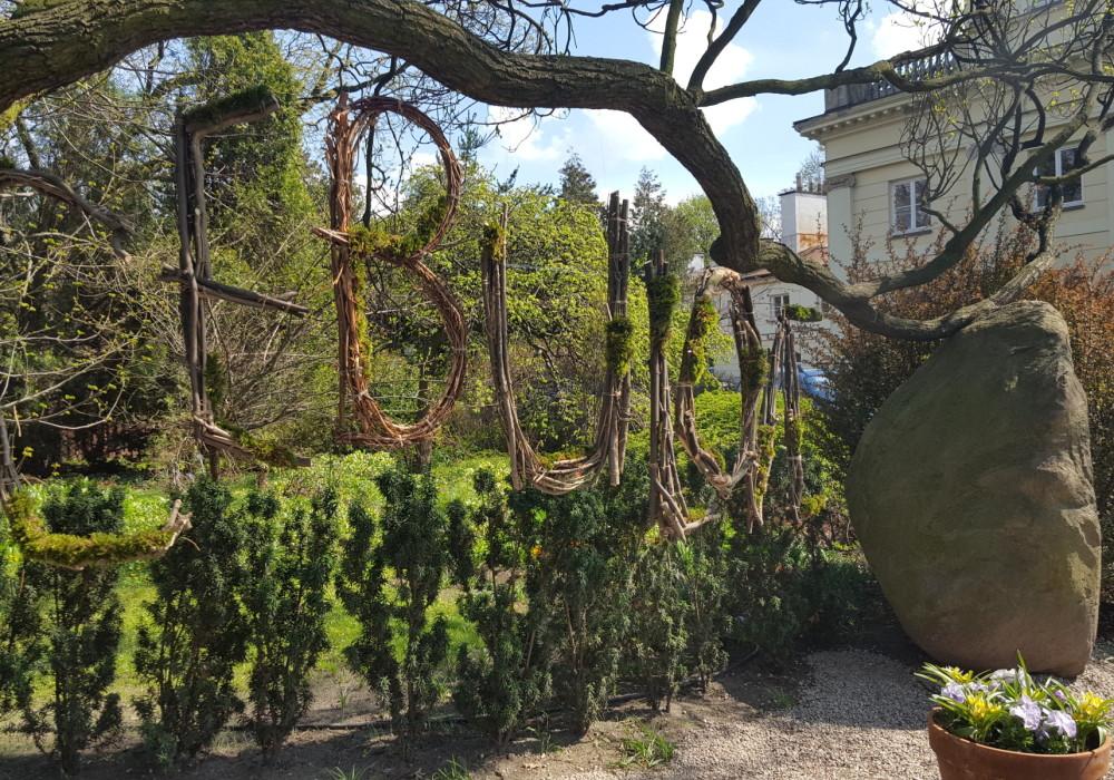 Tulipanowy festiwal w ogrodzie botanicznym