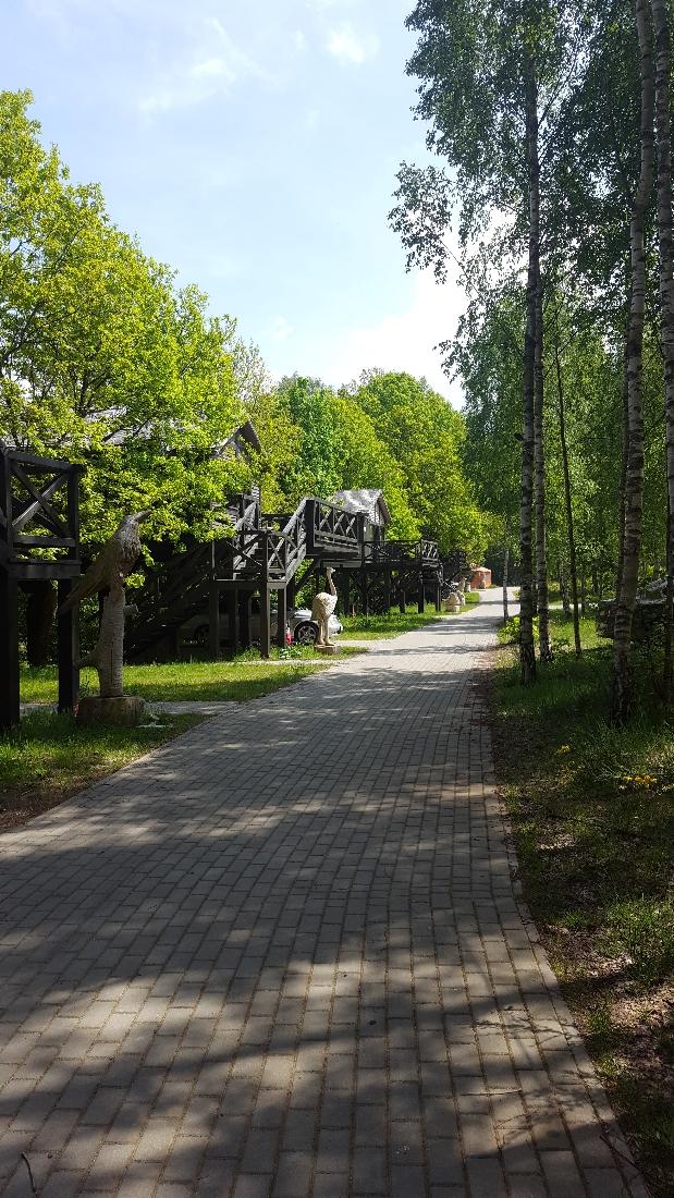 Dolina Charlotty aleja domków na drzewie