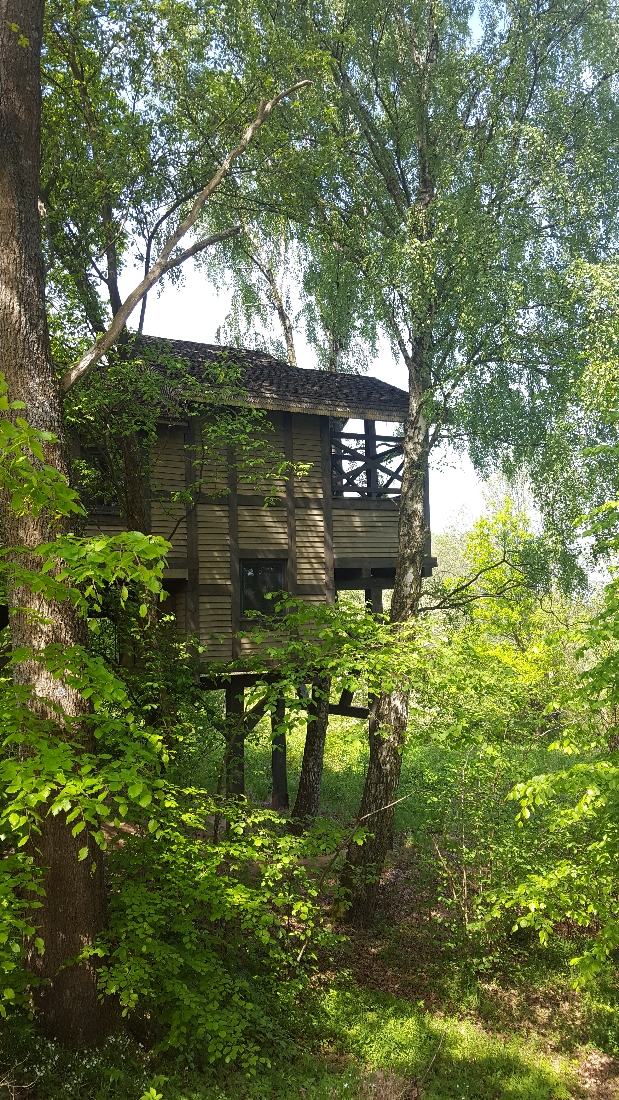 Dolina Charlotty domki na drzewie